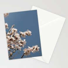 it's spring Stationery Cards