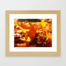 Autumn flames Framed Art Print