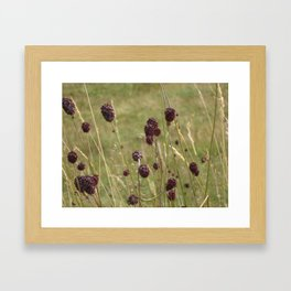 French Meadow Nature Framed Art Print