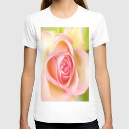 Lovely delicate pink rose T-shirt