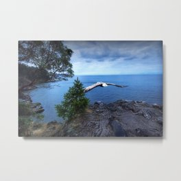 Eagle at Lighthouse Park Metal Print