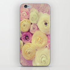 Color Me Pretty II iPhone & iPod Skin