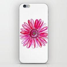 Pink Gerber Daisy iPhone & iPod Skin