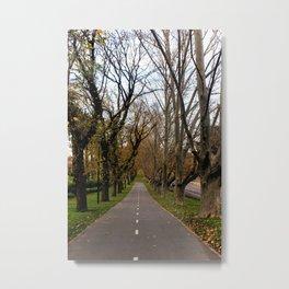 Midday Stroll Metal Print