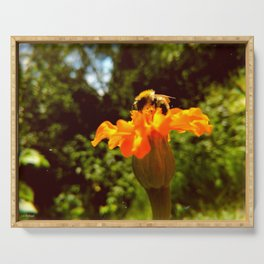 bee of autumn Serving Tray