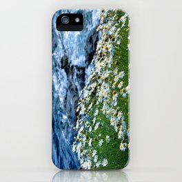 Sea Daisies iPhone Case