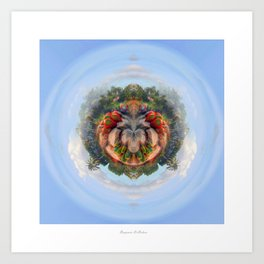Cactus symmetry #2 Art Print