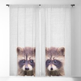 Raccoon - Colorful Blackout Curtain
