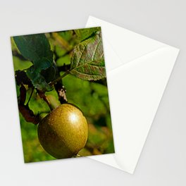 hanging apple Stationery Cards