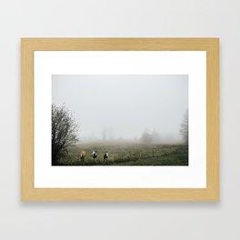 Foggy Horses Framed Art Print