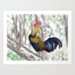 Red Junglefowl (Original Available for sale) Art Print