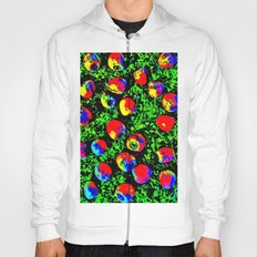 Colorful Nuts Hoody