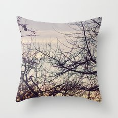 Fight for Light Throw Pillow