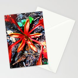 Flor Rojo Stationery Cards
