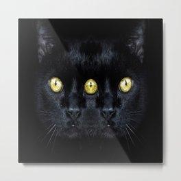 cat black animal Metal Print