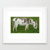 donkey Framed Art Prints featuring Donkey by Imager