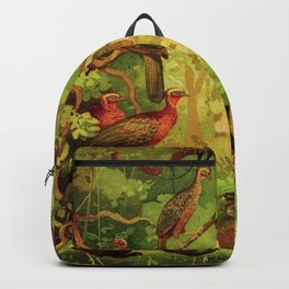 Amazonian Birds by Göldi & Emil August Belem Brazil Colorful Tropical Birds Scientific Illustration Backpack
