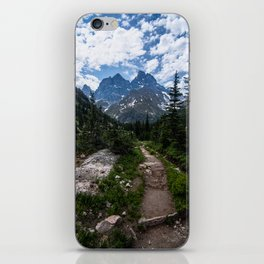 Teton Canyon, Grand Teton National Park iPhone Skin
