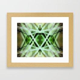 Kalidescope Kandy 1.4 Framed Art Print
