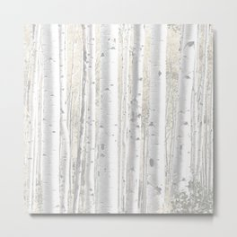 Pale Birch Trees 255 Metal Print