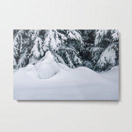 Beauty of Winter 16 Metal Print
