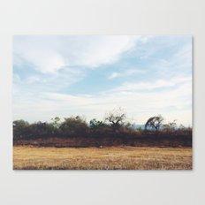 Cuernavaca. México. Canvas Print