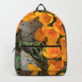 Golden Crocus In The Rockery Backpack