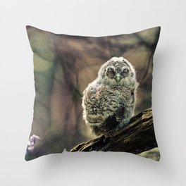 Tawny Owl Chick Throw Pillow