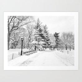 New York City Winter Trees in Snow Art Print