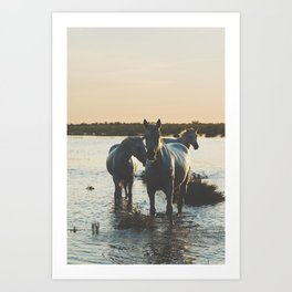 Camargue Horses III ... Art Print