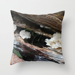 Where The Fairies Live Throw Pillow