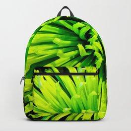 Lime Spider Backpack