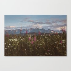 Mountain vibes Canvas Print