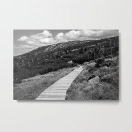 Black and White Tundra Metal Print