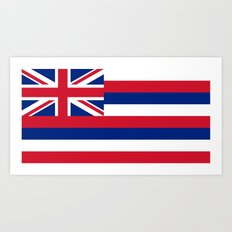 The State flag of Hawaii - Authentic version Art Print