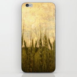 Light in the Grasses iPhone Skin