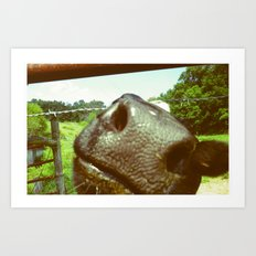 cow nose Art Print