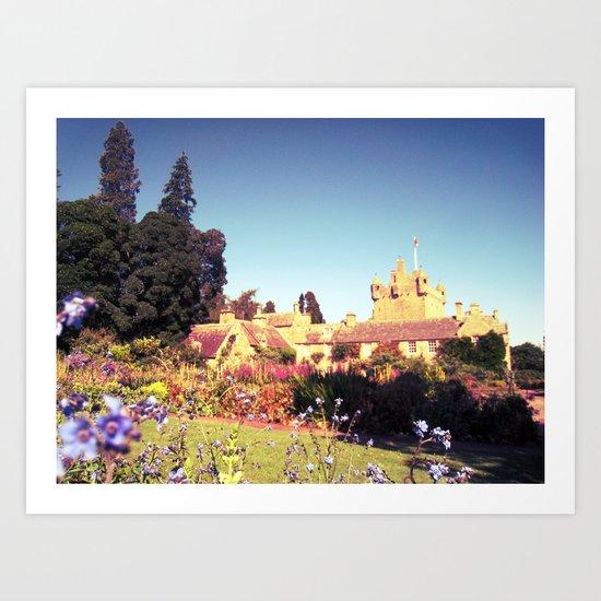 castle flowers. Art Print