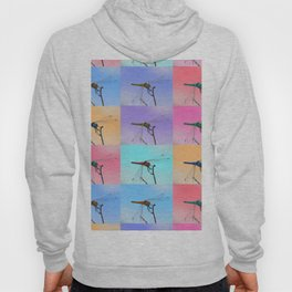 Colorful sky for a magic dragonfly is a great scenery for a friendly atmosphere Hoody