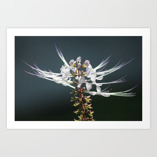 Stretching Out Art Print
