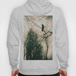 Crow Blur Hoody