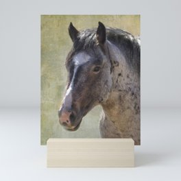 Grullo Roan Stallion Vers 2 - Pryor Mustangs Mini Art Print