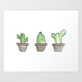 3 types of cactus Art Print