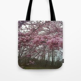 New England Redbud in bloom  Tote Bag