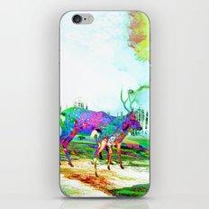 Imbue iPhone & iPod Skin