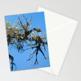 Treehuggers Stationery Cards