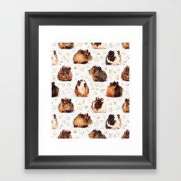 The Essential Guinea Pig Framed Art Print