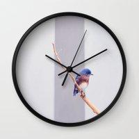 western Wall Clocks featuring Western Bluebird by Ez Pudewa
