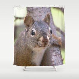 Watercolor Pine Squirrel 07, Kickin' Back Shower Curtain