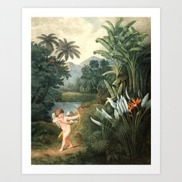 Cupid : New Illustration Of The Sexual System Art Print